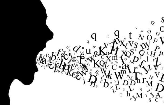 Pensée et langage, ou la fabrique de l'homme